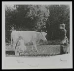 Femie, Snowy and Fanny at Cranmore Lodge [Euphemia (known as Phemie) the Maid Milking Snowy the Cow with Fanny (Frances Hodgkins) Carrying a Pail]
